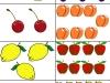ovocie1-bingo-natalia-renckova