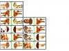 huby-domino2-tereza