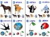 abeceda-kl-tereza