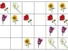 kvety-sudoku2-beata-moravcikova