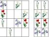 lucne-kvety2-sudoku-natalia-renckova