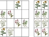 lucne-kvety3-sudoku-natalia-renckova
