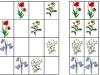 lucne-kvety5-sudoku-natalia-renckova